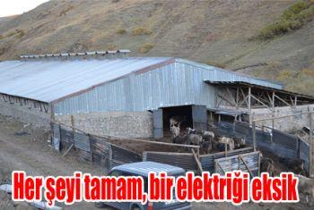 Ahıra elektrik çekmek için 30 bin TL istediler