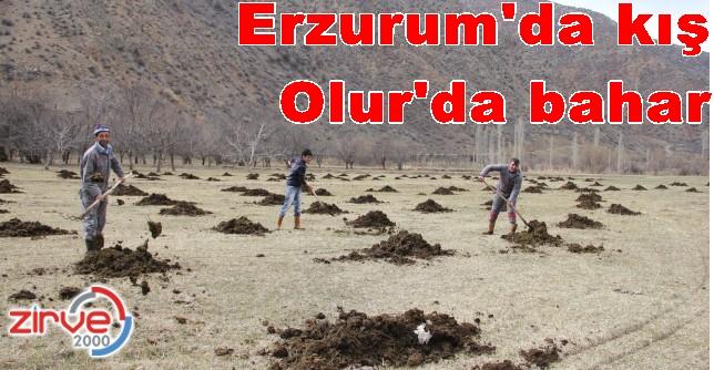 Erzurum'un iki yüzü