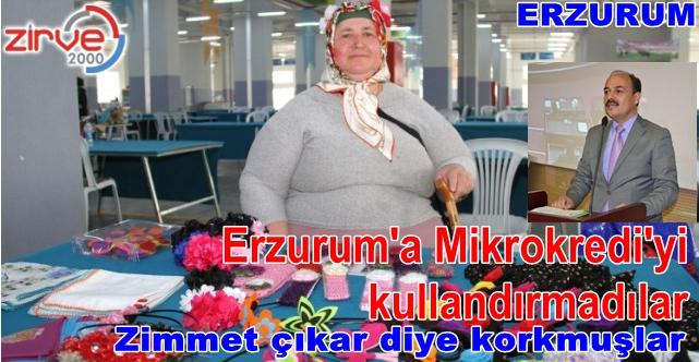 En fazla kredi Erzincan kullandı