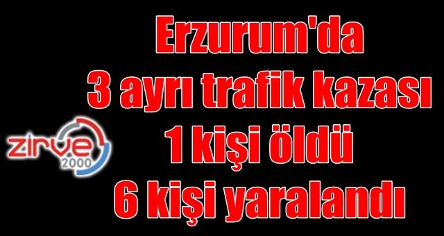 Erzurum'da kaza…