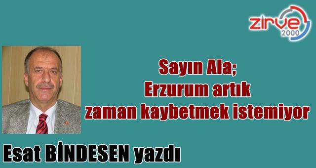 Erzurum meselelerine hakim…