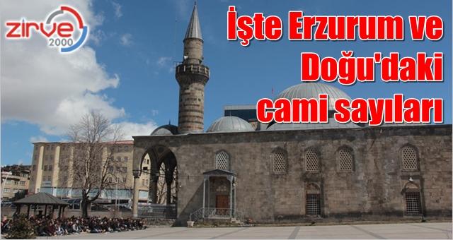 Erzurum Doğu'da ilk sırada
