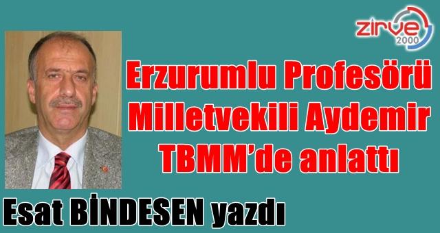 Erzurumlu Profesörü Milletvekili Aydemir TBMM'de anlattı