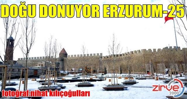 Erzurum buz kesti