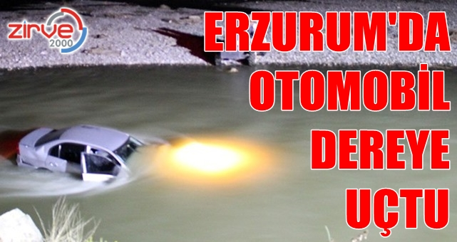 Erzurum'da kaza: 3 kişi yaralandı