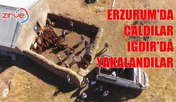 ERZURUM JANDARMASI 111 KAMERA KAYDI İZLEDİ
