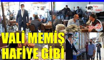 HAFİYE VALİ