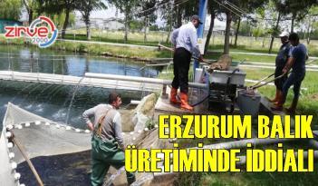 Denizi olmayan Erzurum'dan balık üretimi