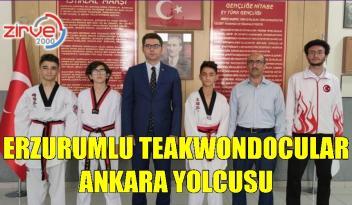 Türkiye Taekwondo Şampiyonasına katılacaklar